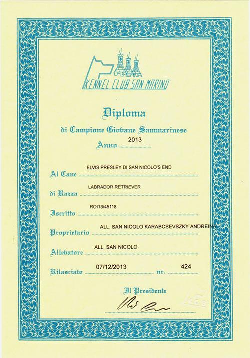 elvis-diploma-san-marino-2013
