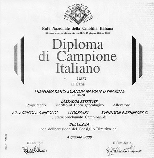 maverik-campione-italia-2009