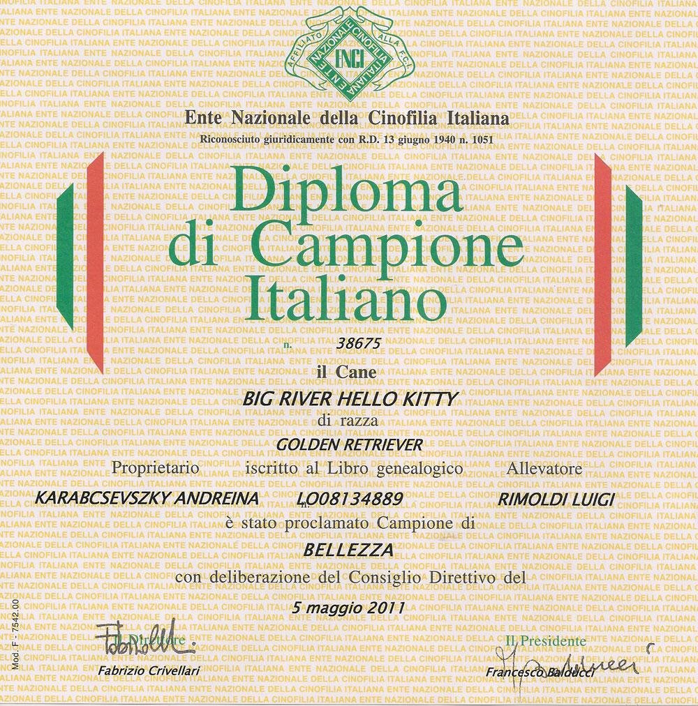 Diploma-Kitty-Campione-Italiano-2011