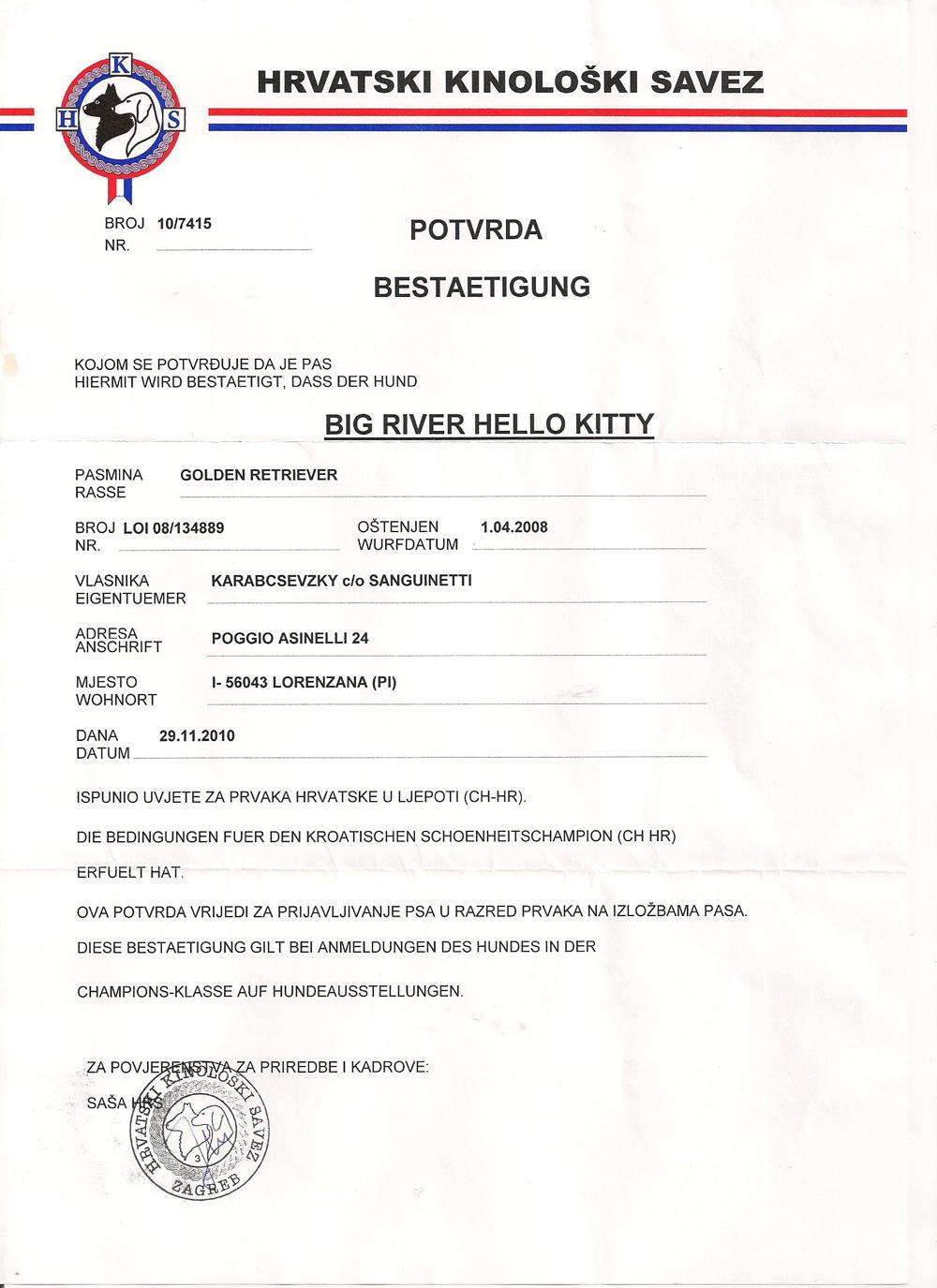 Diploma-Kitty-Croazia-Big-River-2010