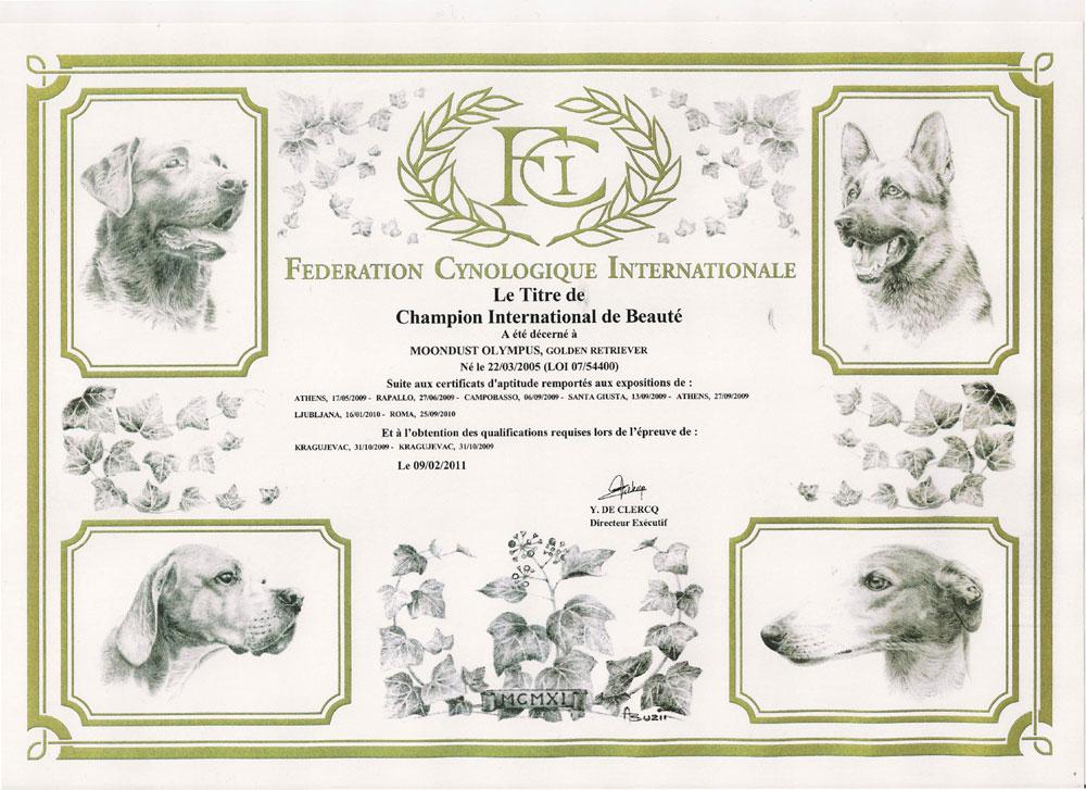 attestato-fci-champion-international-beaute-2011