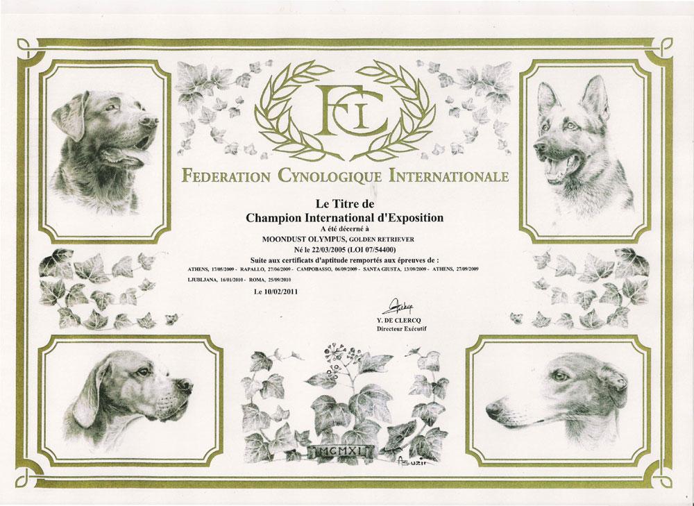 attestato-fci-champion-international-exposition-2011