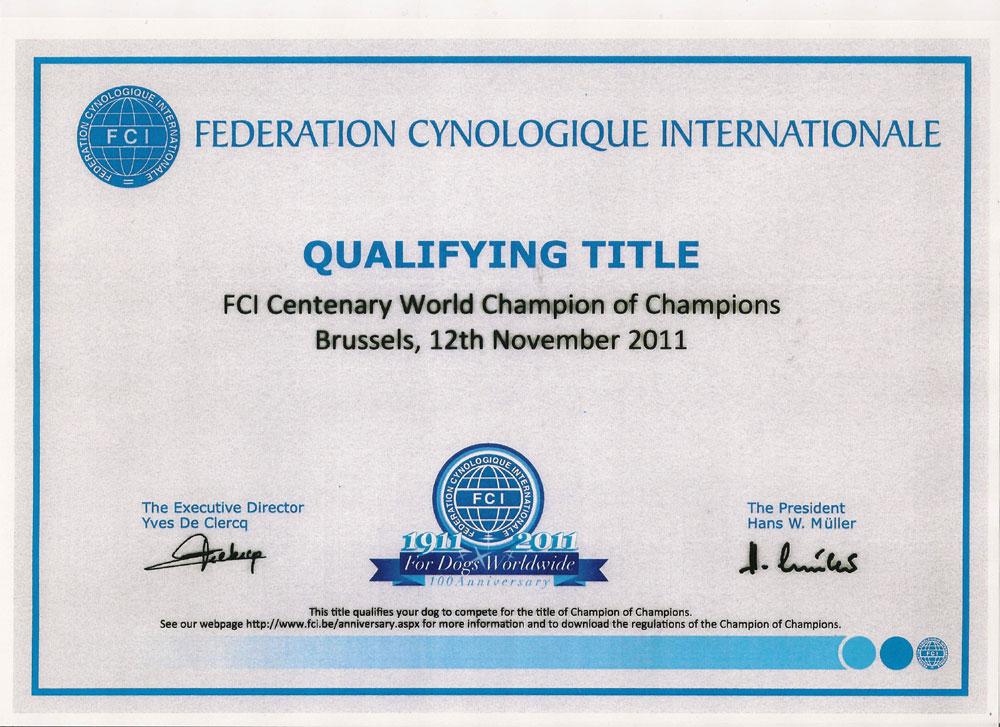 attestato-fci-champion-of-champions-2011