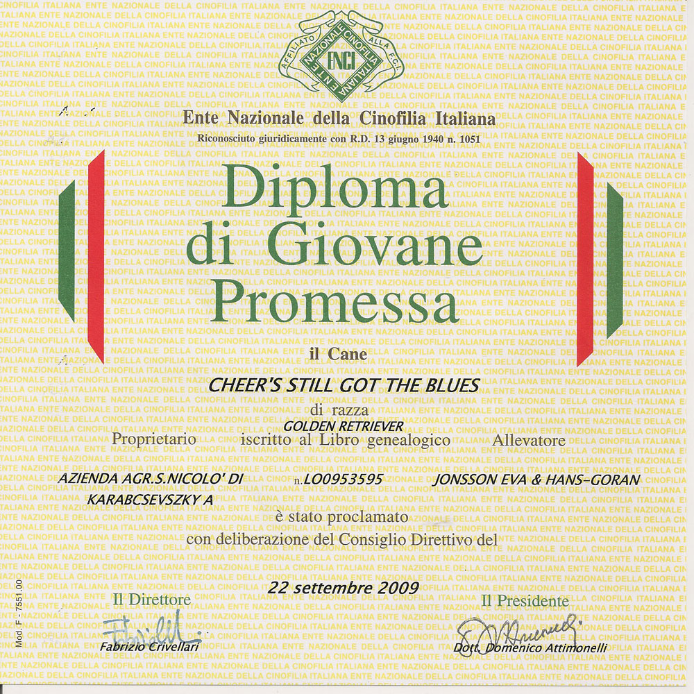 attestato-giovane-promessa-2009