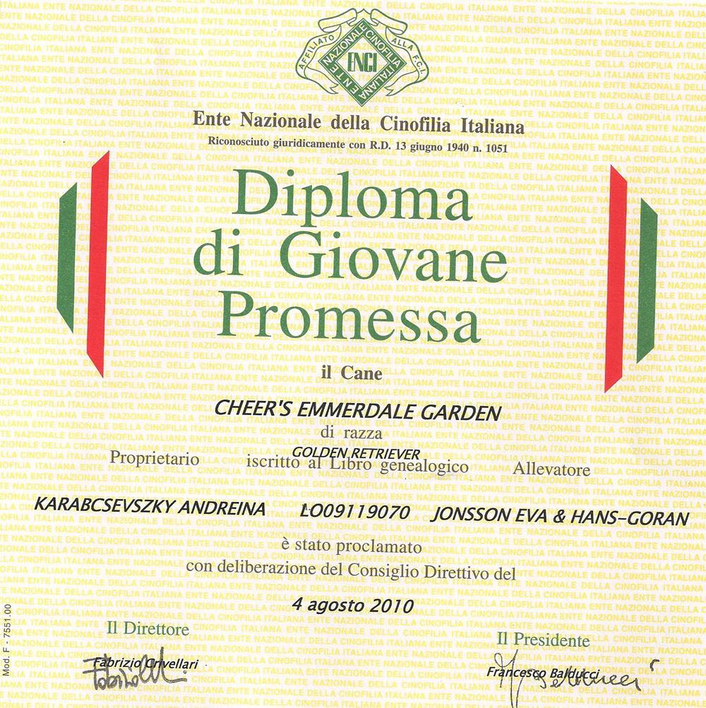 attestato-giovane-promessa-2010